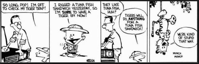hobbes-tuna